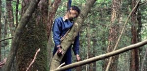 intihar ormanı