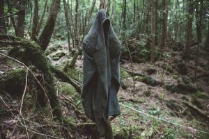 korkunç orman