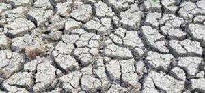 kıtlık ve kuraklık